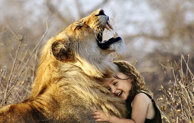 lev s dívkou